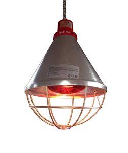 lampe chauffante poule