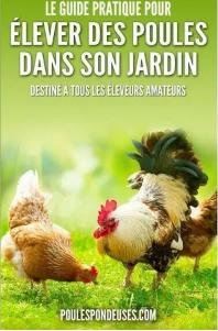 guide élever des poules dans son jardin